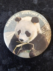 Natural History Museum panda badge
